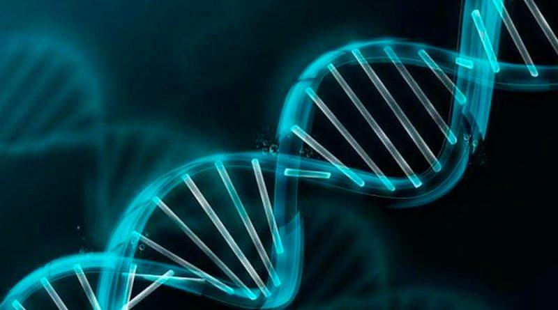Científicos logran ensamblar el genoma humano en minutos con un portátil