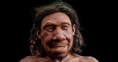 La ciencia reconstruye el rostro de un neandertal de 50.000 años encontrado en los Países Bajos