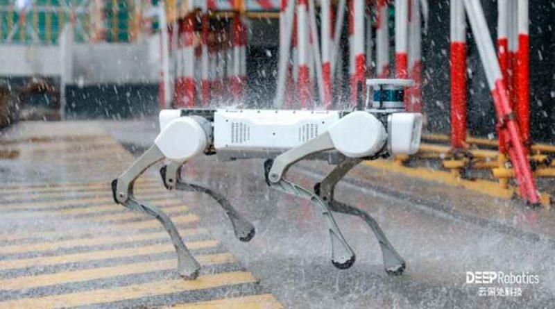 Diseñado un robot con patas resistente a la lluvia