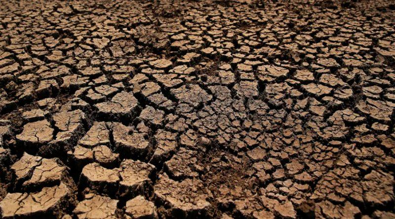 Casi ningún país cumplió metas climáticas y México y Brasil retrocedieron: informe