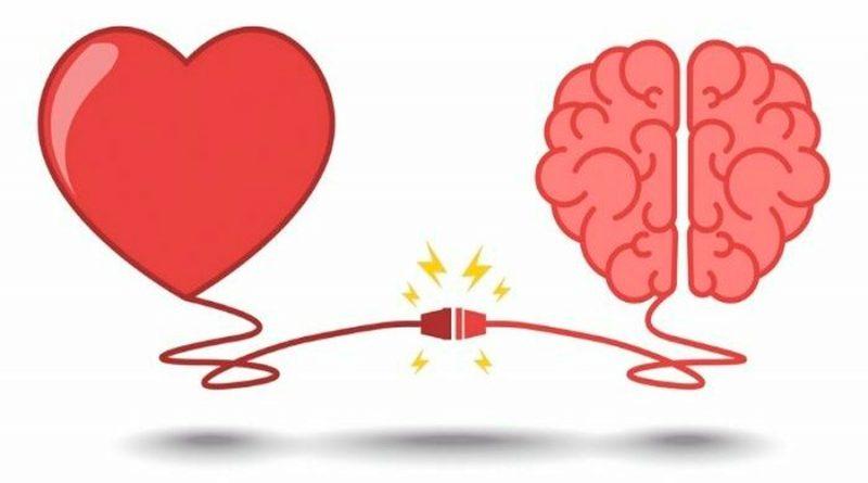Tu cerebro y corazón se sincronizan cuando escuchas una anécdota de tu vida