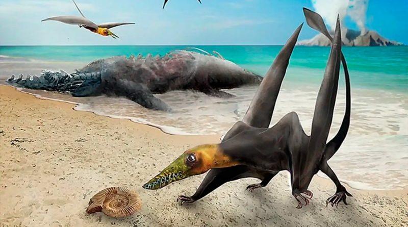 Descubren restos de un 'dragón volador' del periodo Jurásico en el hemisferio sur