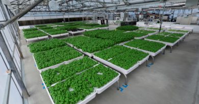 Fondo de tecnología verde de Bill Gates apuesta por robots agrícolas de Silicon Valley