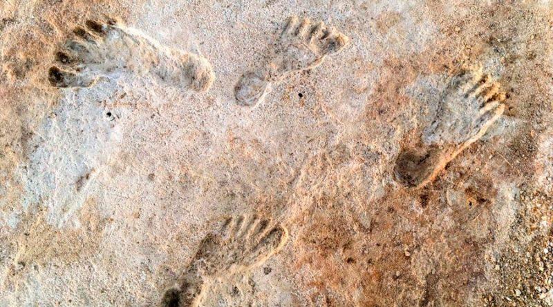 Huellas de Nuevo México prueban humanos en América hace 23,000 años