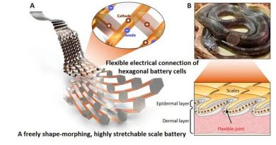 Inventan una batería flexible que se puede estirar como una escama de serpiente