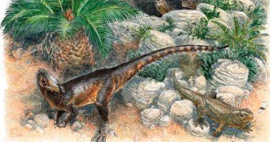Describen nueva especie de dinosaurio carnívoro en el Reino Unido