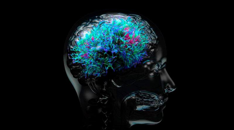 Crean en la UNAM videojuegos para rehabilitar a pacientes con daño neurológico