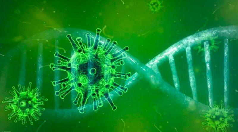 Una gran pandemia de coronavirus ocurrió en Asia hace 20.000 años, aseguró un estudio científico
