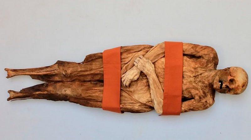 """Descubren tres """"familiares"""" vivos de una momia suiza del siglo XVIII"""