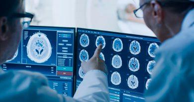 Los científicos han logrado dar vida al cerebro del renacuajo